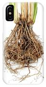 Vetiver Grass Roots IPhone X Case