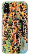 Vibrant Berries IPhone Case
