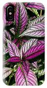 Vibrant Persian Shield II IPhone Case