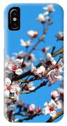 Vibrant Spring IPhone Case