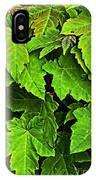 Vibrant Young Maples - Acer IPhone Case