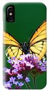Viceroy Butterfly Square IPhone Case