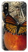 Viceroy On Peach IPhone Case