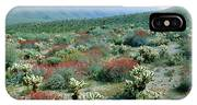 View Of Desert Wild Flowers And Cacti IPhone Case
