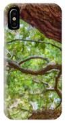 View Through Angel Oak Tree IPhone Case