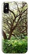 Vines And Oaks IPhone Case