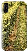Vines Growing In Vineyard IPhone Case