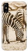 Vintage Zebras IPhone Case