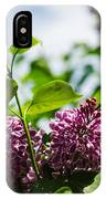 Violet Lilacs And A Bee IPhone Case