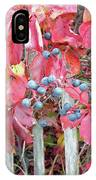 Virginia Creeper Fall Leaves And Berries IPhone Case