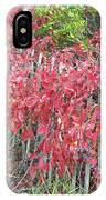 Virginia Creeper Vine On Dune Fence - Fall Colors IPhone Case
