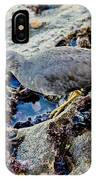 Wadering Tattler At Low Tide IPhone Case