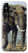 Walk About IPhone Case