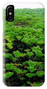 Wall Of Ivy IPhone Case