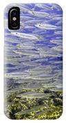 Wall Of Silver Fish IPhone Case