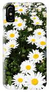 Wall To Wall Daisies IPhone Case