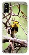 Warbler - Black-throated Green Warbler IPhone Case