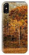 Warm Autumn Glow IPhone Case