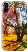 Washington Park I IPhone Case