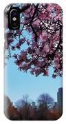 Washington Park II IPhone Case