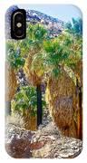 Washingtonian Fan Palm Grove Along Lower Palm Canyon Trail Near Palm Springs-california  IPhone Case
