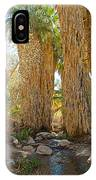 Washingtonian Fan Palms With Large Skirts In Andreas Canyon-ca IPhone Case
