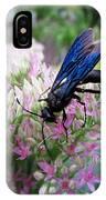 Wasp On Sedum IPhone Case