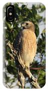 Watchful Eyes - Red Shouldered Hawk IPhone Case