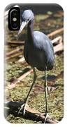 Watchful Little Blue Heron  IPhone Case