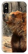 Watching The Sun Set IPhone Case