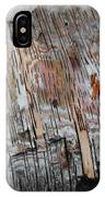Water And Birch IPhone Case