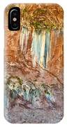 Water Artworks IPhone Case