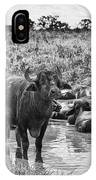 Water Buffaloes-black And White IPhone Case