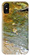 Water Plants 2 IPhone Case
