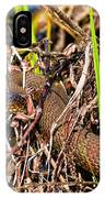 Water Snake In Hiding IPhone Case
