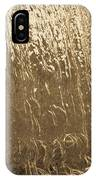 Water Wall Gold IPhone Case