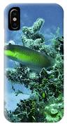 Water World Three IPhone Case