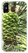 Watercolor Of Ripening Pine Cone IPhone Case