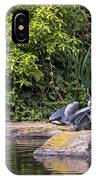 Waterfowl Pond IPhone Case