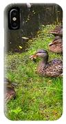 Watershed Ducks IPhone Case
