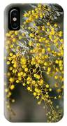 Wattle Flowers IPhone Case