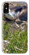 Waved Albatross  And Young IPhone Case