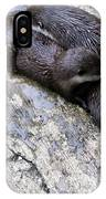 We Otter Snuggle Up IPhone Case