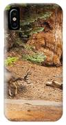 Welcome Home - Sequoia National Forest IPhone Case