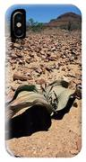 Welwitschia Mirabilis In Petrified Forest IPhone Case
