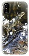 Western Fence Lizard Aka Blue-belly Lizard IPhone Case