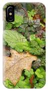 Wet Leaves IPhone Case