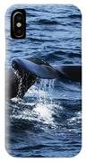 Whale  IPhone X Case