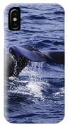 Whale Tail 2 IPhone X Case