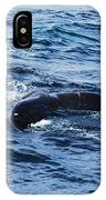 Whale Tail 3 IPhone X Case